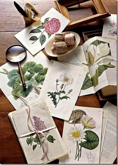 Trendy: szczypta botaniki/ botanical prints