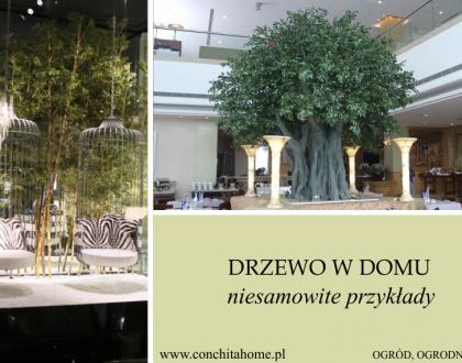 Drzewo w domu - niesamowite przykłady związku człowieka z naturą