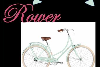 PROJEKT ROWER: Chciałabym mieć rower, ale jaki?