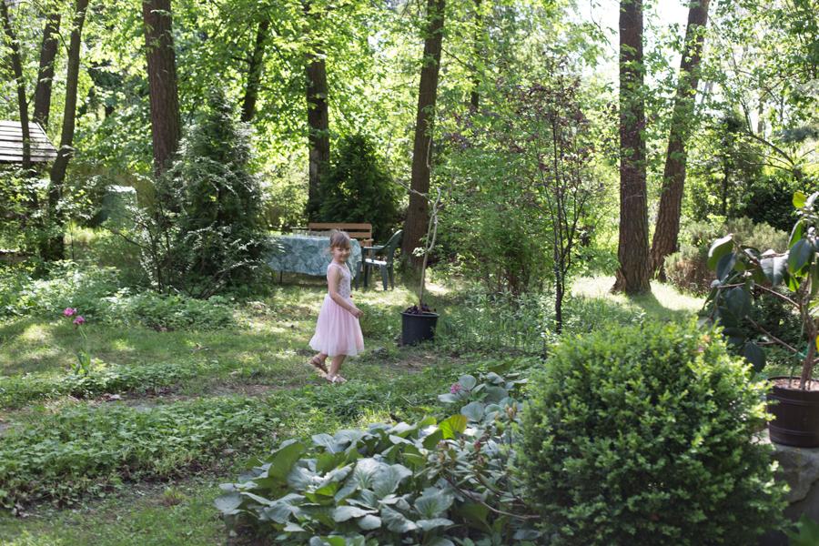 w starym ogrodzie